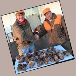 Wingshooting Hunts Guided Hunting Rice Va
